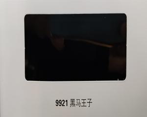 9921黑马王子